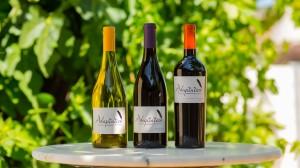 Adaptation Wines
